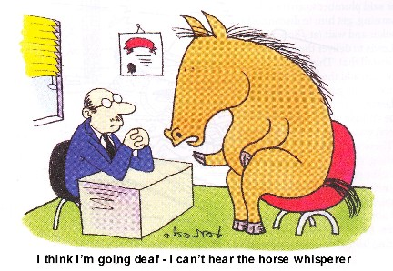 Showing post & media for Horse training cartoons | www.cartoonsmix.com