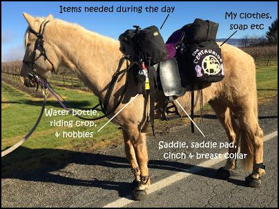 Safety Equipment For A Long Rider